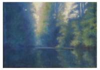 22 - Teich im Wald - 50x35 - © 2010 by H. W. Thurmann