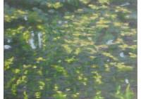 4 - Kleine Wasserspiegelung - 80x60 - © 2013 by H. W. Thurmann