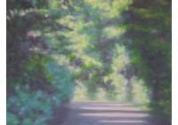 5 - Parkweg - 50x50 - © 2005 by H. W. Thurmann