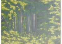 8 - Waldstück - 80x60 - © 2013 by H. W. Thurmann