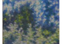 2 - Bäume im Gegenlicht - 30x50 - © 2010 by H. W. Thurmann