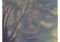 23 - Gewässer im Wald - 50x80 - © 2012 by H. W. Thurmann