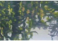 4 - Wasserspiegelung - 80x50 - © 2014 by H. W. Thurmann