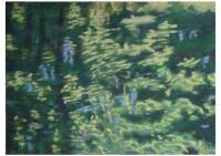 9 - Wasserspiegelung - 140x100 - © 2012 by H. W. Thurmann